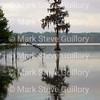 Lake Martin, Louisiana 032317 040