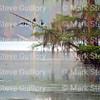 Lake Martin, Louisiana 032317 051