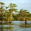 Lake Martin, Louisiana 041517 017