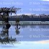 Lake Martin, Breaux Bridge, Louisiana 01082018 058