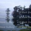 Lake Martin, Breaux Bridge, Louisiana 01082018 004