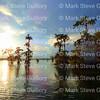 Lake Martin, Saint Martin Parish, Louisiana 09172017 002