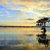 Lake Martin, Saint Martin Parish, Louisiana 09172017 049