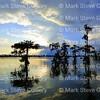 Lake Martin, Saint Martin Parish, Louisiana 09172017 006