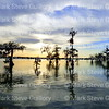 Lake Martin, Breaux Bridge, Louisiana 03302018 002