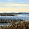 Lacassine Pool, Lacassine NWR, Lake Arthur, Louisiana 02052018 010