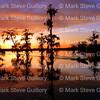 Lake Martin, Breaux Bridge, Louisiana 03302018 065