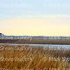Lacassine Pool, Lacassine NWR, Lake Arthur, Louisiana 02052018 009
