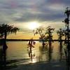 Lake Martin, Breaux Bridge, Louisiana 03302018 012