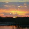 Cameron Prairie NWR, Louisiana 113014 062