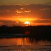 Cameron Prairie NWR, Louisiana 113014 074