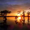 Lake Martin, Breaux Bridge, Louisiana 03302018 026
