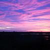 Cameron Prairie NWR, Louisiana 121114 007