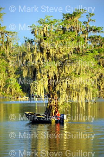 Lake Martin, Breaux Bridge, Louisiana 03302018 157