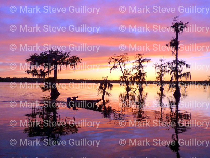 Lake Martin, Breaux Bridge, Louisiana 03302018 114