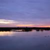 Cameron Prairie NWR, Louisiana 121114 029