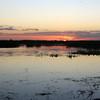 Cameron Prairie NWR, Louisiana 113014 057