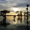 Lake Martin, Breaux Bridge, Louisiana 03302018 013