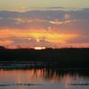 Cameron Prairie NWR, Louisiana 113014 061