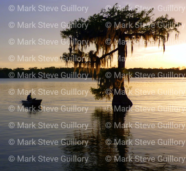 Lake Martin, Breaux Bridge, Louisiana 03302018 023