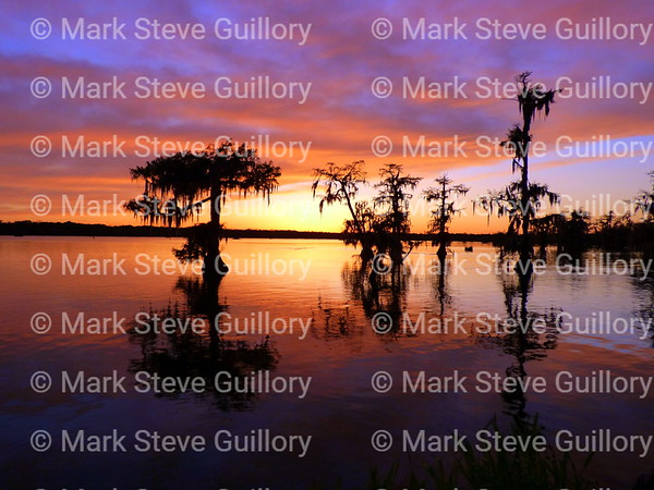 Lake Martin, Breaux Bridge, Louisiana 03302018 092