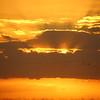 Cameron Prairie NWR, Louisiana 113014 101