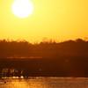 Cameron Prairie NWR, Louisiana 112914 222