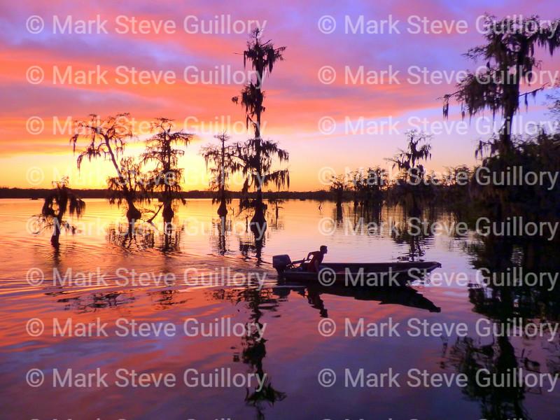 Lake Martin, Breaux Bridge, Louisiana 03302018 115