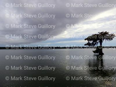 Lake Martin, St Martin Parish, Louisiana E 09192019 175