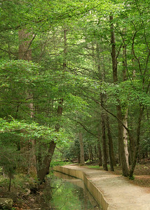 Walkway in Cades Cove
