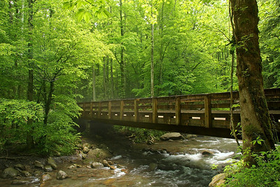 Bridge In Greenbrier Tennessee