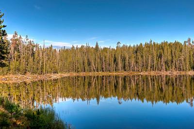 Between Grand Teton & Yellowstone