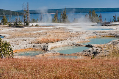 Yellowstone, West Thumb Geyser Basin