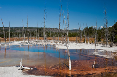 Yellowstone, Black Send Basin, Opal Scent Pool