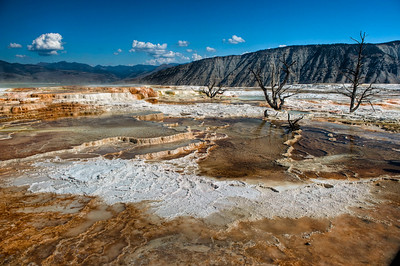 Yellowstone, Upper Terraces of Mammoth Hot Springs