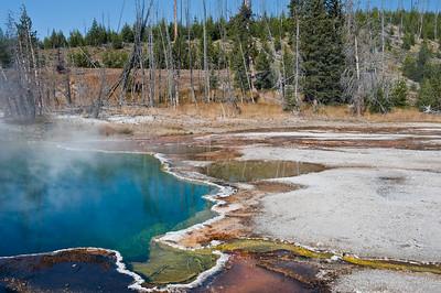 Yellowstone, West Thumb Geyser Basin
