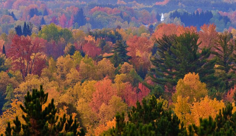 Michigan Fall Landscape