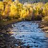 Wasatch Autumn-Provo River (vertical), Utah