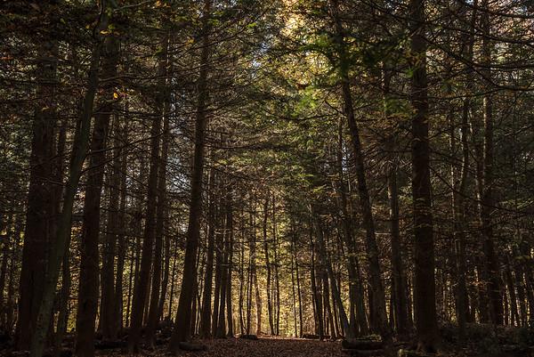 Cuyahoga Valley National Park, Hudson, Ohio