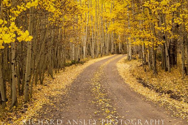 Colorado Gold 8-San Juan mountains
