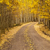 Golden Road-San Juan mountains