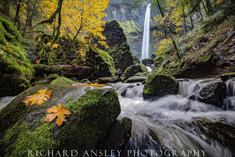 Elowah Falls 3