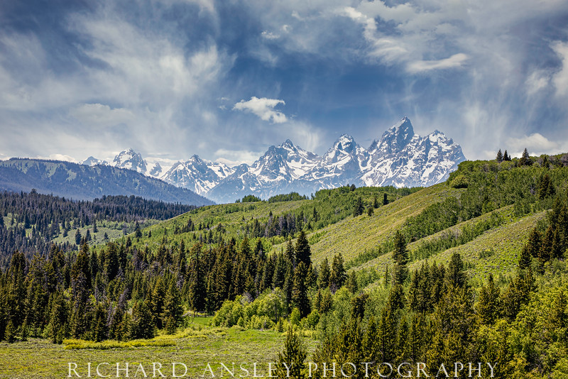 Teton Summer Green & Blue-Grand Teton National Park