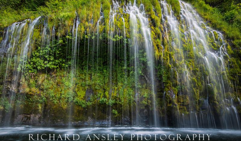 Moss Falls-California