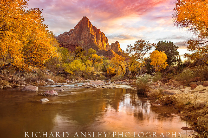 Watchman Golden Sunset-Zion NP, Utah
