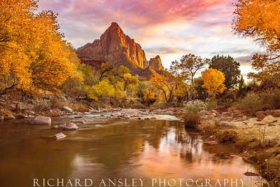 Watchman Golden Sunset-Zion NP, Utah