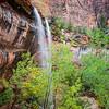 Emerald Falls 1-Zion NP, Utah