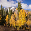 Wasatch Autumn-Touching The Clouds, Utah