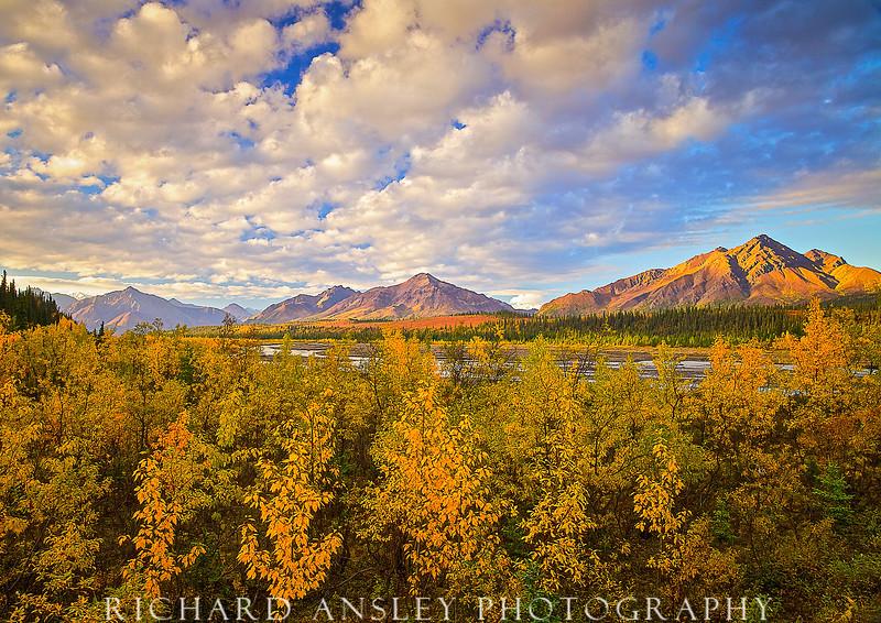 Teklanika River Drainage-Denali NP, Alaska