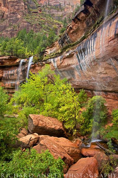 Emerald Pool Falls-Zion NP, Utah